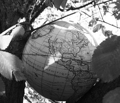 beautiful world essay